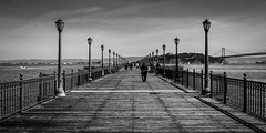 A Pier Too Far (Sean Batten) Tags: sanfrancisco california city sea sky urban blackandwhite bw usa water america 35mm bay us nikon unitedstates d800 pier7