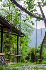DSC_0464-2- (svetlanatsoy) Tags: house nature georgia relax 50mm restaurant nikon view wine bokeh tasting nikkor batumi nikkor50mm 50mmlens adjarian nikonphoto nikond5100