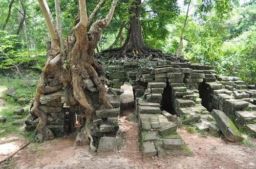 angkor - cambodge 2014 39