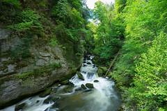 Gorges_Areuse_spring_I.jpg (jan.remund) Tags: landscape waterfall spring wasser long exposure wasserfall jura bume wandern frhjahr langebelichtung