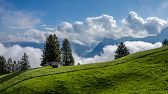 Lonely cottage (hjuengst) Tags: trees mountain clouds schweiz swiss cottage htte wolken berge hut liechtenstein bume triesenberg masescha