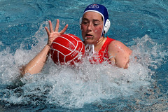 AW3Z0326_R.Varadi_R.Varadi (Robi33) Tags: summer sports water swimming ball fight women action basel swimmingpool watersports waterpolo sportspool waterpolochampionship