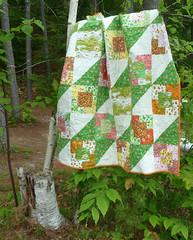 Strawberry Fields Stumped (alidiza) Tags: quilt patchwork briarrose heatherross