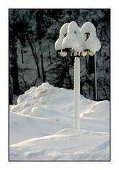 141 Niagara Falls, Ontario 2004 (DBattag) Tags: winter ice waterfalls scenary niagaraonthelake niagarafallsontario