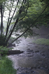 Nice Atmosphere (Jeannette Proctor Knapp) Tags: pretty pennsylvania anniversary jeannette proctor jproknapp10gmailcom