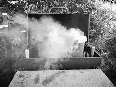 Smoking (shortscale) Tags: bbq grill rauch