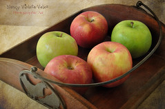 Wooden tray and apples (Nancy Violeta Velez) Tags: texture photography interesting flickr plantae rosales motat georgebernardshaw maloideae angiosperms eudicots stiillife malusdomestica nikkor18200 rosids tatot pomaceousfruit nikond5000 elements9 tomjoneslittlegreenapples frenchkissartisteatelier nancyvioletavelez~photographicart woodentrayandapples ifyouhaveanappleandihaveanappleandweexchangetheseapplesthenyouandiwillstilleachhaveoneapplebutifyouhaveanideaandihaveanideaandweexchangetheseideastheneachofuswillhavetwoideas