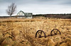 Abandoned (Nancy Rose) Tags: old house tree abandoned field grass clouds wagon novascotia wheels hay economy fbdg