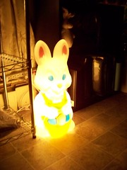 100_5965   Light up Happy Bunny (Sam T (samm4mrox)) Tags: decorations holiday bunny bunnies home night easter lights furry fuzzy decor kodakz8612