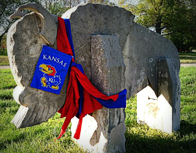 Rock Chalk Buffalo