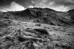 Rocks of Llyn Ogwen (Howie Mudge LRPS) Tags: sky grass wales rocks snowdon gwynedd sigma1020mm llynogwennikond7000
