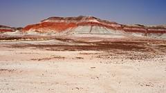 Painted Desert, AZ 3456 (Petr Bednarik) Tags: arizona landscape nationalpark spring sand day desert canyon painteddesert rim mesa