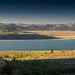 Mono Lake and Landscape of the Eastern Sierra
