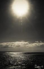 Quand le soleil est d'or, la mer est d'argent - Steve.© -
