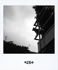 """#DailyPolaroid of 8-7-12 #284 • <a style=""""font-size:0.8em;"""" href=""""http://www.flickr.com/photos/47939785@N05/7550947280/"""" target=""""_blank"""">View on Flickr</a>"""