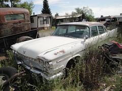59 Chrysler Saratoga (DVS1mn) Tags: cars car nine chrysler mopar nineteen 59 1959 fifty ninety wpc walterpchrysler chryslercorporation ninetyfiftynine nineteenfiftynine