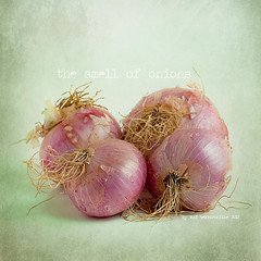 The smell of onions (Mat texturonline) Tags: stilllife texture photoshop raw flash mat bodegn onion acr naturemorte acrilyc canonmacrolens magicunicornverybest magicunicornmasterpiece