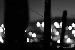 Cerca (2586) (Jorge Belim) Tags: pb noturna cerca preferida canoneos50d