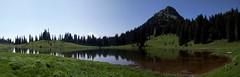 Tipsoo Lake (Lisha D) Tags: park flowers trees mountain lake water colors mt hills rainier tipsoo