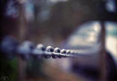 Hardly Linked (Artek Halpern-Laurence) Tags: film car bokeh grain scratches scan chain link dust noise scratch vignette swirly linked helios 442 helios442