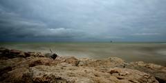 mare torbido (luporosso) Tags: sea naturaleza nature water nikon mare natura acqua marche naturalmente thebestofday gnneniyisi nikond300s