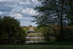 Kralingse Bos, Rotterdam (Frans & all) Tags: holland windmill rotterdam molen kralingsebos fe24240mm