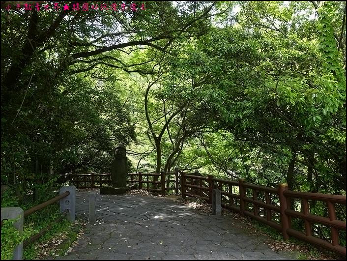 濟州安德溪谷 (3).JPG