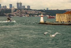 IMGP2482-2 (UmitCukurel) Tags: nightphotography sea night cat turkey puente mar pentax turkiye istanbul gato turquia bogazici bosphorus kedi kizkulesi maidentower k3ii