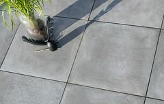GeoCeramica 60x60x4 Terrastegel Fumato Mezzo | Bestratingsweb.nl (Bestratingsweb.nl) Tags: mbi beton keramiek bestrating 60x60cm keramisch betontegel slijtvast bestratingswebnl geoceramica fumatomezzo stabikorn geoceramica stabikorn