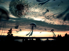 Jelly Filled Skies (Gabriel Tomoiaga) Tags: sunset sky fish art film clouds sunrise landscape flying fishing jellyfish moody shadows surrealism magic fineart alien flight dream surreal floating dandelion adventure explore fantasy dreamscape fineartphotography storyteller