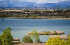 L'estany d'Ivars / Ivars lake (SBA73) Tags: naturaleza lake nature birding catalonia ivars catalunya marsh dried marshland catalua reborn catalogna estany katalonien catalogne ponent vilasana pladurgell    recuperat