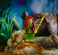 Poison Ivy (adria1223) Tags: dc lego superheroes custom poisonivy legominifigure minifigure dcsuperheroes legobatman legofigure legocustom legosuperheroes legodc legodcsuperheroes legopoisonivy