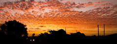 Red Cirrocumulus (Mark & Cy Photos) Tags: lighting camera travel blue light sunset red sky panorama cloud sun color colour car silhouette horizontal set by skyline composition point landscape photography photo still twilight automobile shoot day exterior sundown natural general time outdoor dusk object crafts arts environmental style gear lamppost moonrise shade transportation land vehicle format concept framing conceptual setting effect orientation genre compact cirrocumulus nightfall gloaming altocumulus evenfall flickryes cloudtype geocodedyes weatherartscraftsphotographyworkflowgeocodedyesflickryessettingskylineexterioroutdoorphotogenrestyletypetravellandscapegeneralgearstillcameracompactpointshootorientationlightingnaturallightframingcompositionenvironmentalfo