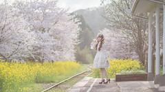 DSC_9548 (nana_tsuki) Tags: