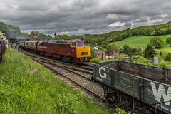 Great Western, literally (Terry 47401) Tags: diesel western hydraulic severnvalley d1015 class52 preverved d1058 1c02