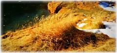 Le pont fragile... a fragile bridge...like a wave.... (www.nathalie-chatelain-images.ch) Tags: autumn winter mountain snow grass jaune montagne automne golden frozen nikon hiver neige zermatt matterhorn valais herbe schwarzsee cervin lacnoir geler 2500m