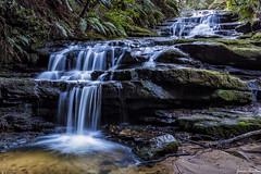 Leura Cascades (jimmmy03) Tags: water canon waterfall sydney sigma australia bluemountains newsouthwales leura leuracascades sigma35mm canon6d canonaustralia sigmaart sigmaartlens