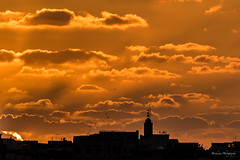 Rabat sunset. (Bouhsina Photography) Tags: sky orange color birds silhouette clouds canon wow minaret morocco maroc couleur rabat sunest mosque toits brillant bouhsina 7dii ef7020028ii bouhsinaphotography