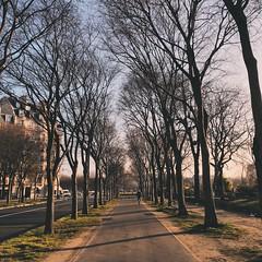 Paris (Marcosnr92) Tags: street old city sunset sky paris beautiful architecture landscape photography europe photographer place horizon fade iphone vsco vscocam iphone6s shotoniphone6s