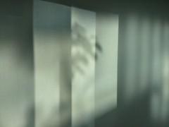 (regard graphiste) Tags: architecture lumire arbre fentre reflets couloir diffraction cintique