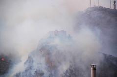 The saddest day #2 (Emily's mind) Tags: mountain fire smoke montagna incendio fuoco fumo criminality montepellegrino criminalit castelloutveggio utveggiocastle