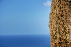 Tenerife Blue Sky (noor.alnakib) Tags: blue sea summer sky nature spain nikon outdoor tenerife