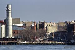 Grand Ferry Park, Brooklyn (Joel Raskin) Tags: nyc newyorkcity les brooklyn manhattan lowereastside t3i eastriverpark williamsburgbrooklyn 600d canonrebelt3i