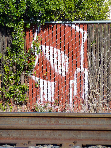 Face On The Fence