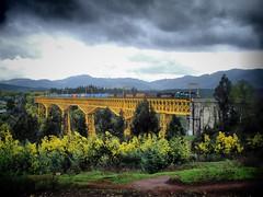 Fepasa, Viaducto del Malleco. (DeutzHumslet) Tags: chile bridge tren gm viaducto fepasa emd cargas collipulli 2362 malleco carguero dblringexcellence tplringexcellence sd38m2 eltringexcellence