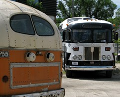MTHA Bus Museum Day (mrchristian) Tags: