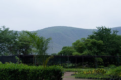 "Las Estacas, Morelos • <a style=""font-size:0.8em;"" href=""https://www.flickr.com/photos/7515640@N06/7432717452/"" target=""_blank"">View on Flickr</a>"