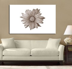 Petal Madness Brown (Simply Canvas Art) Tags: art wallart flowerart homedecoration flowerprints flowercanvas flowerwallart flowercanvasprints flowercanvasart flowercanvaswallart