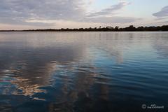 IMG_9597 (eLBianca) Tags: park panorama parco river fiume zambia riflesso lowerzambezi