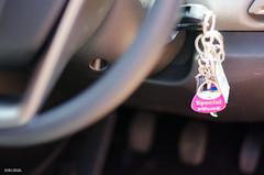 Special Mum (BGDL) Tags: car keyring interior carkey nikond7000 ourdailychallenge elementsorganizer nikkor50mm118g